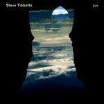 Steve Tibbetts.jpg